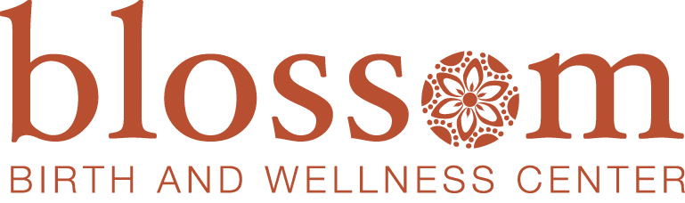 website logo blossom birth and wellness center phoenix arizona natural birth breastfeeding midwife doula pregnant